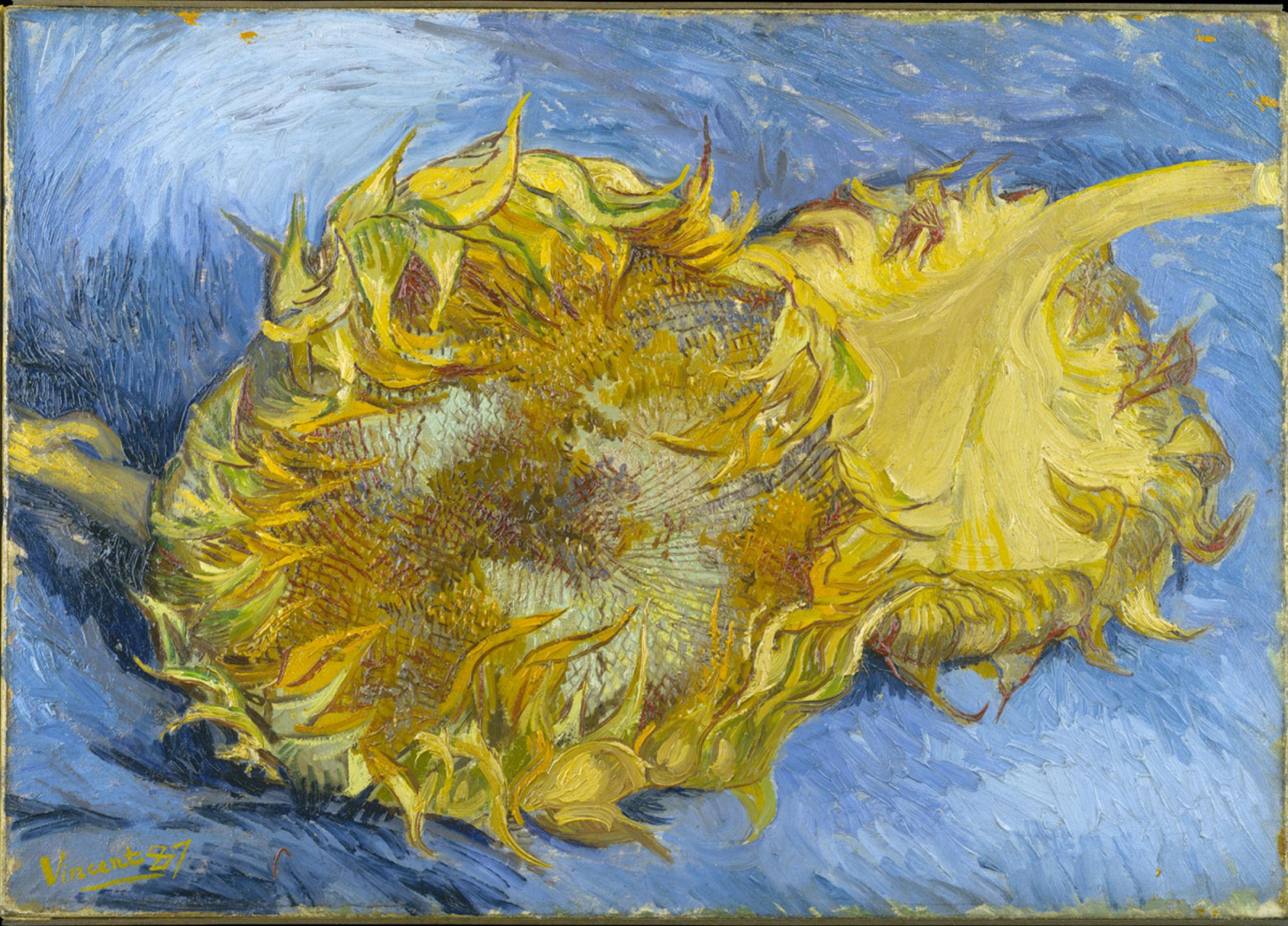 Deborah Feller Artist Deborahfeller