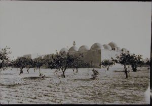 View of Madrasa al-Firdaws with Pistachio Trees. Photo © Creswell Archive, Ashmolean Museum, neg. EA.CA.5844. Image courtesy of Fine Arts Library, Harvard College Library.
